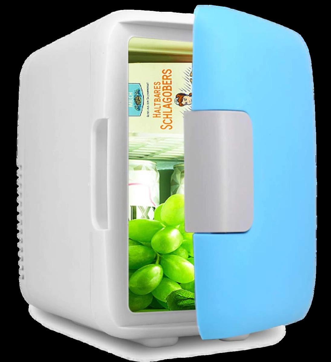mini hladilnik 2